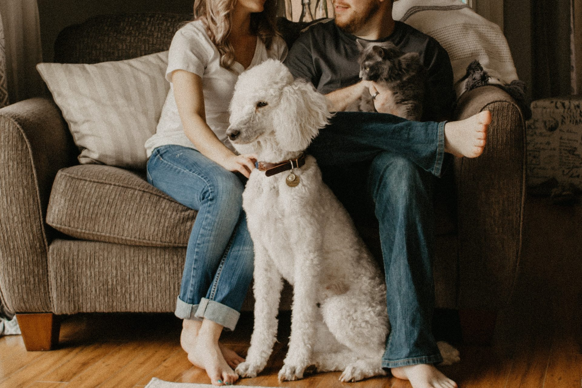 Customer Loyalty for your Pet Business
